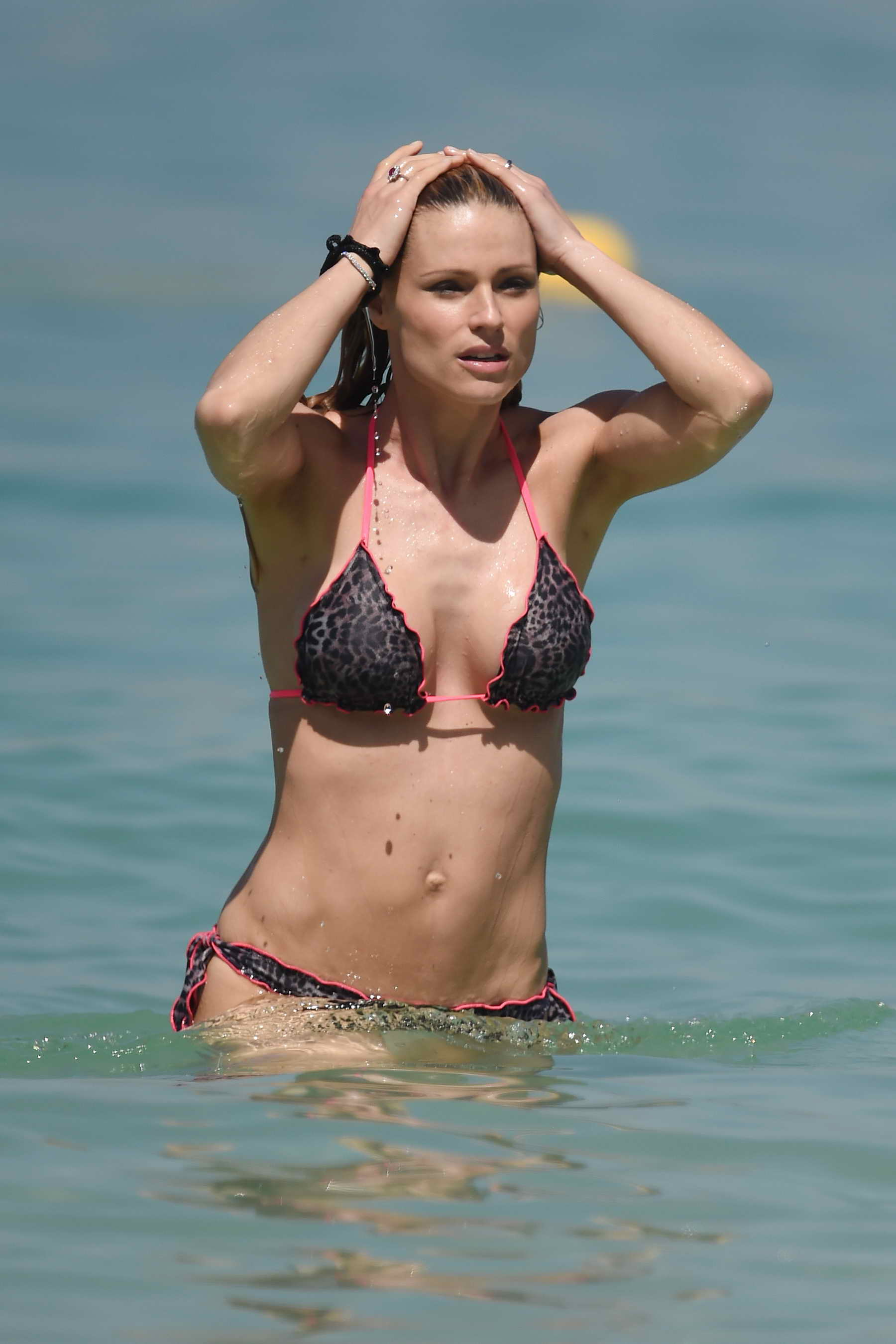Michelle Hunziker nude (73 pics) Cleavage, iCloud, see through