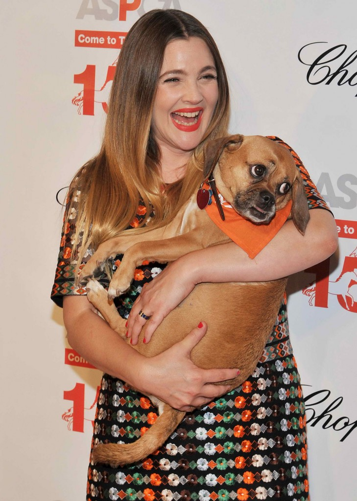 Drew Barrymore at The 19th Annual ASPCA Bergh Ball at The Plaza Hotel in New York-2