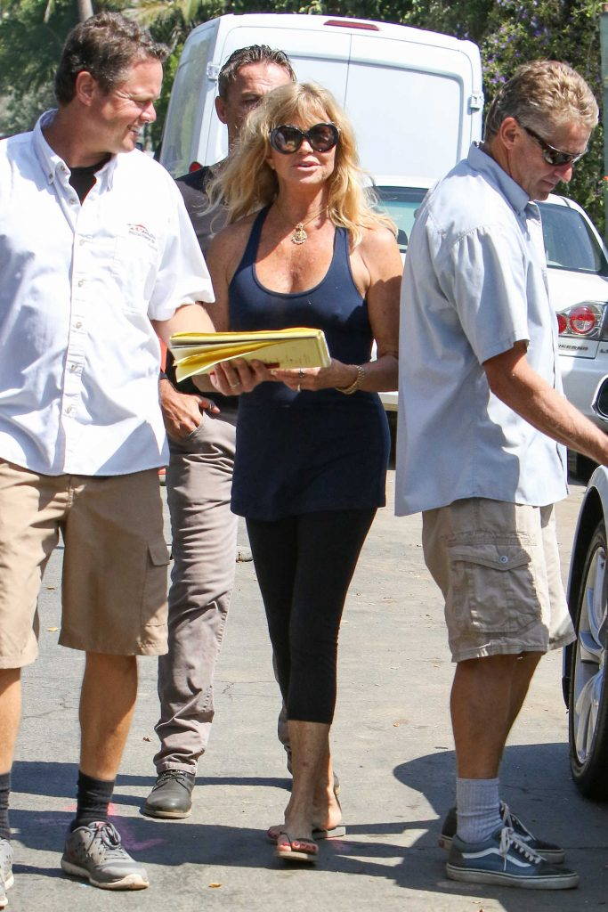 Goldie Hawn Was Seen Out in Los Angeles-1