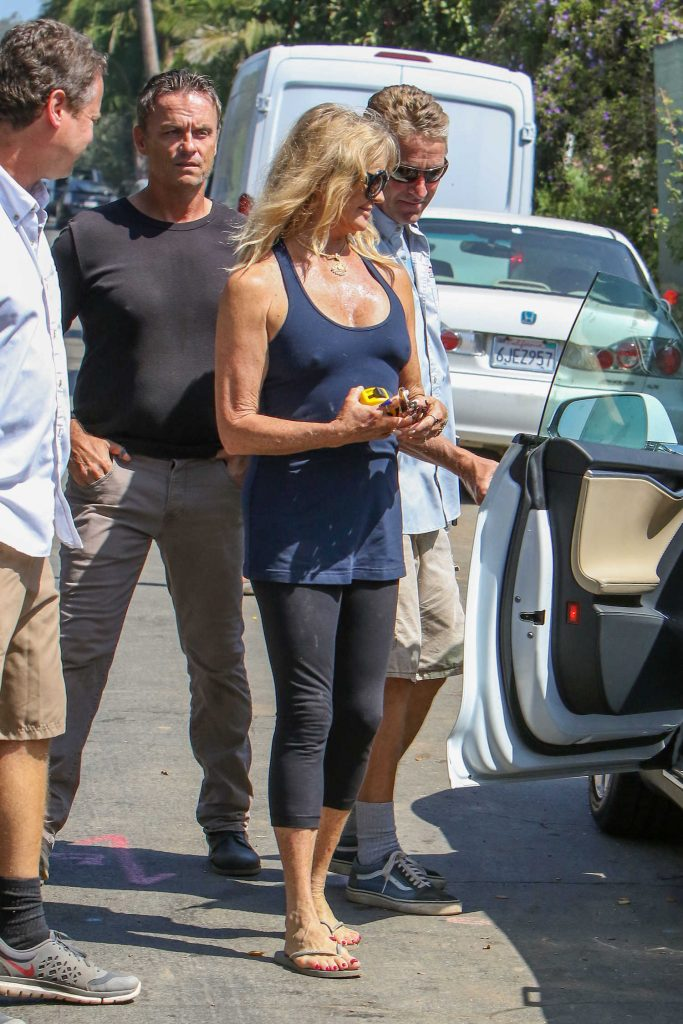 Goldie Hawn Was Seen Out in Los Angeles-2