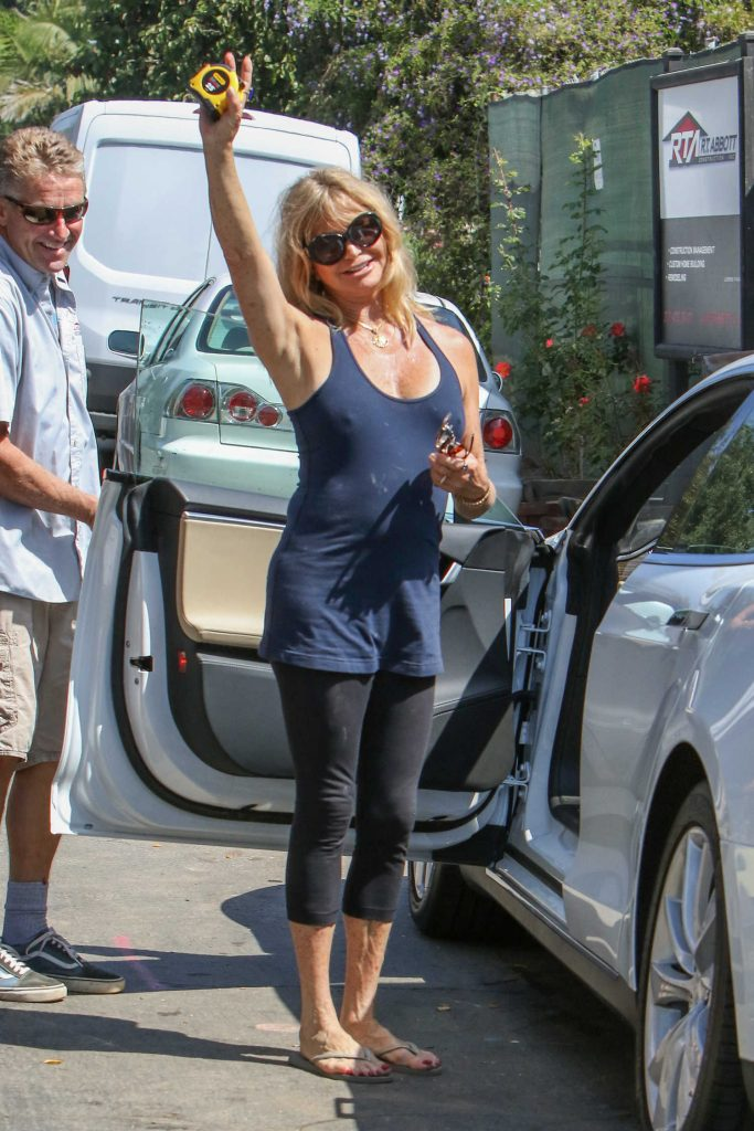 Goldie Hawn Was Seen Out in Los Angeles-3