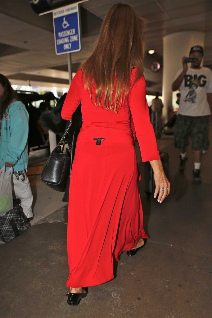 Jane Seymour Leaves the LAX Airport in Los Angeles-5