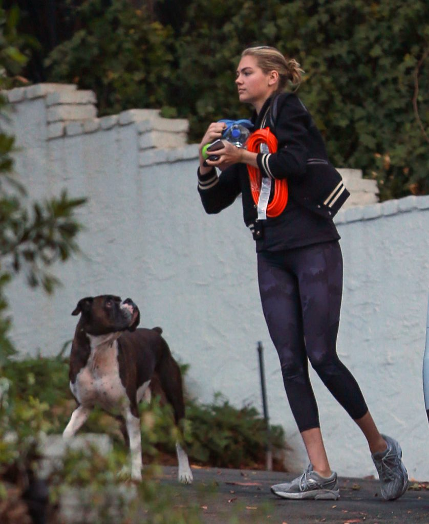 Kate Upton With Her Dog Was Spotted Out in Los Angeles-1