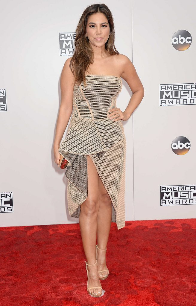 Liz Hernandez at the 2016 American Music Awards at the Microsoft Theater in Los Angeles-1