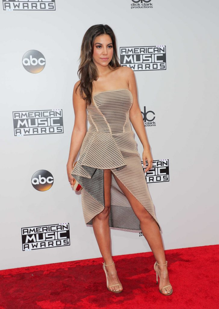 Liz Hernandez at the 2016 American Music Awards at the Microsoft Theater in Los Angeles-2