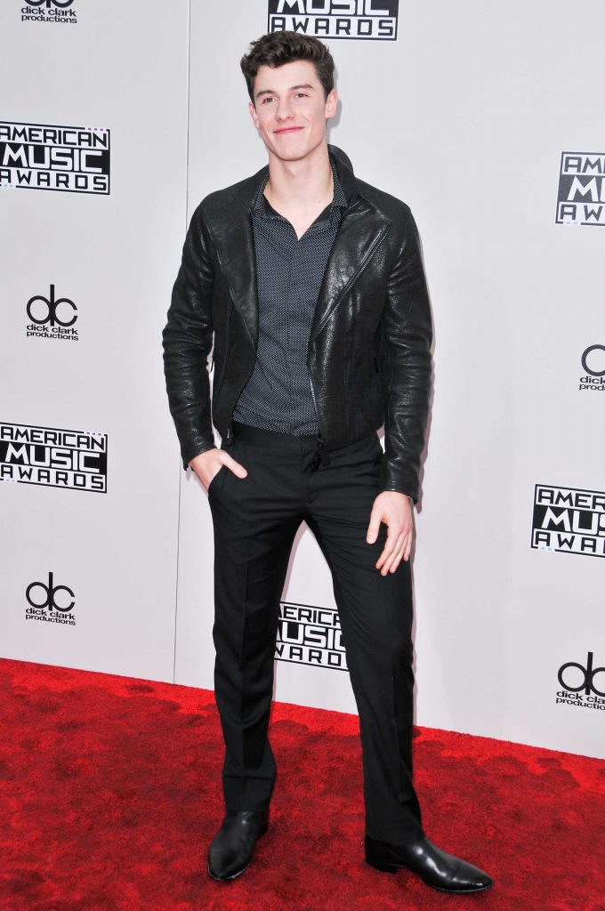 Shawn Mendes at the 2016 American Music Awards at the Microsoft Theater in Los Angeles-1