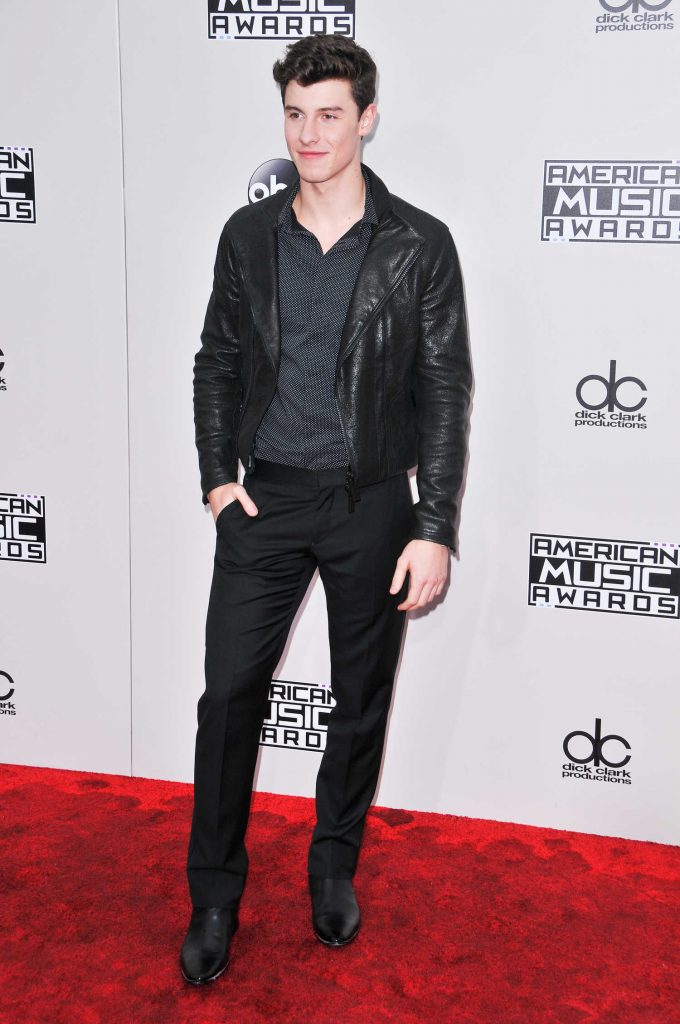 Shawn Mendes at the 2016 American Music Awards at the Microsoft Theater in Los Angeles-2