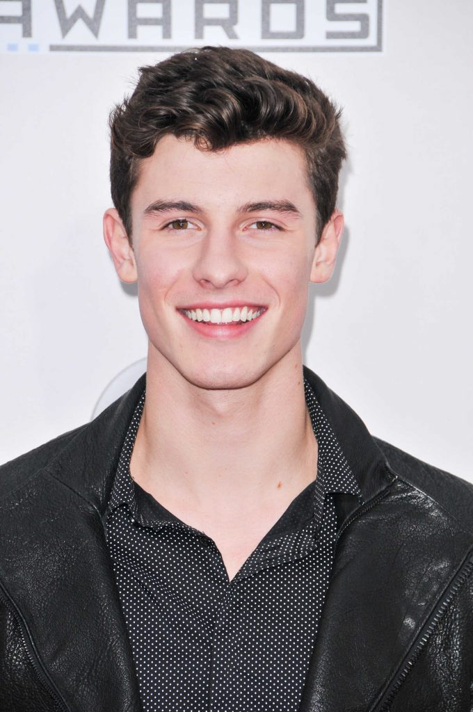 Shawn Mendes at the 2016 American Music Awards at the Microsoft Theater in Los Angeles-4
