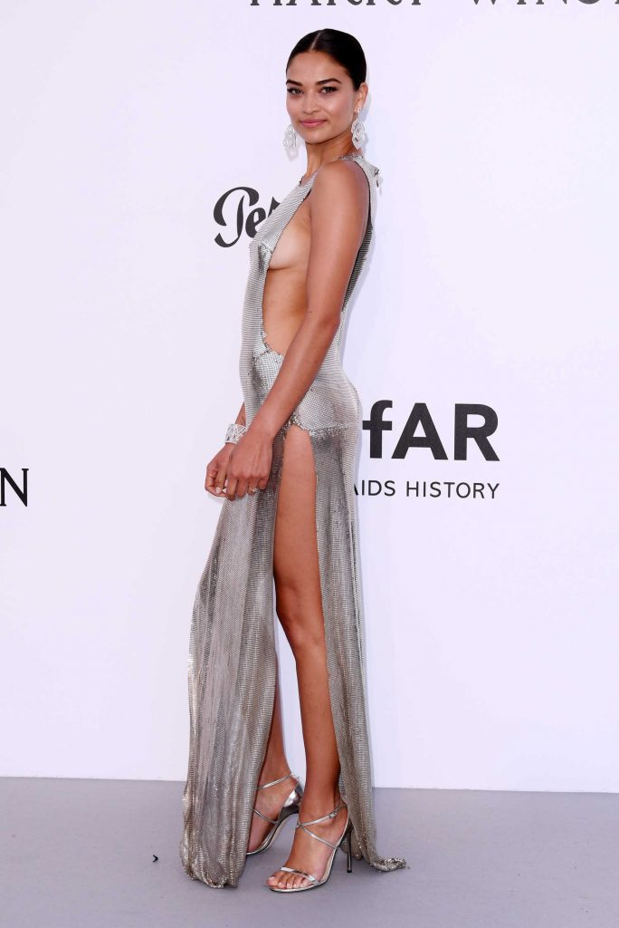 Shanina Shaik at amfAR's 24th Cinema Against AIDS Gala During the 70th Cannes Film Festival-1