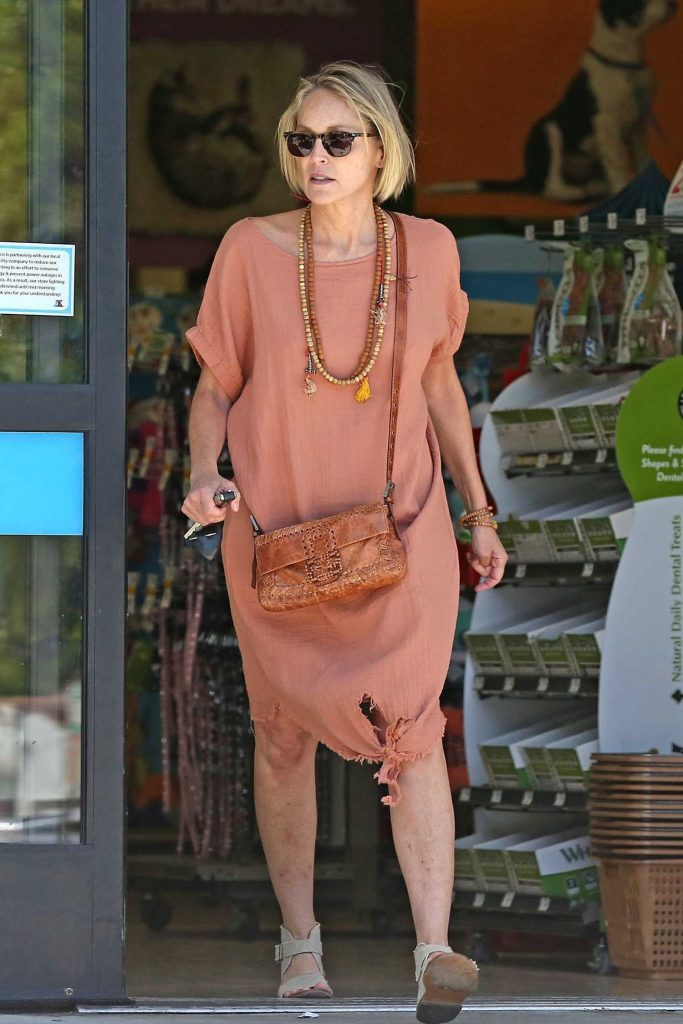 Sharon Stone Was Spotted Out in Beverly Hills-4