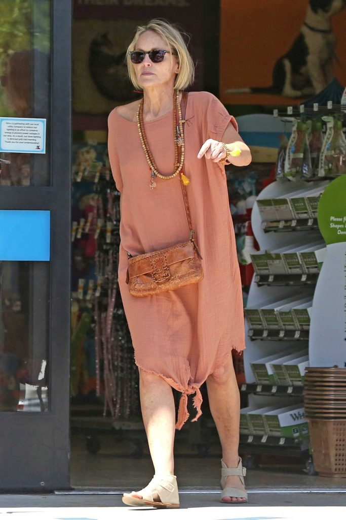 Sharon Stone Was Spotted Out in Beverly Hills-5
