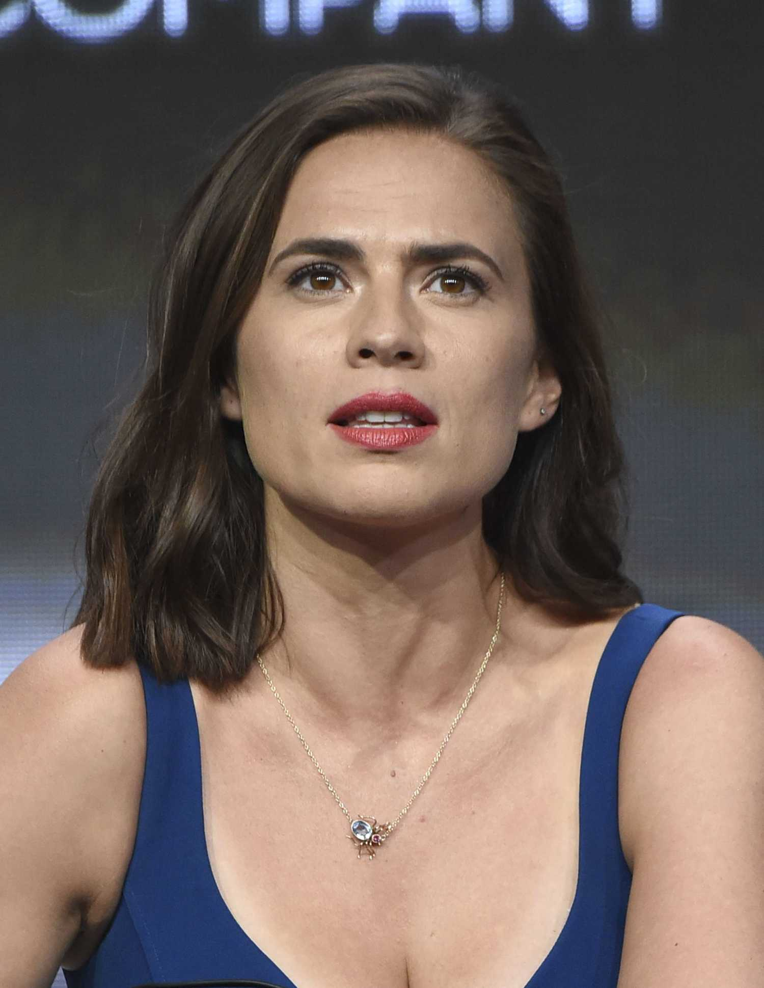 Hayley Atwell at Howar...