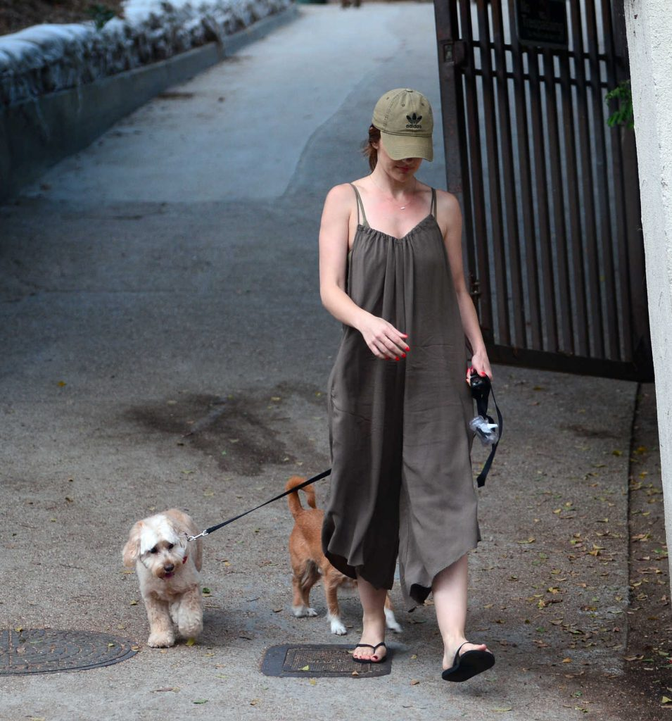 Minka Kelly Was Seen at the Dog Park in West Hollywood-2