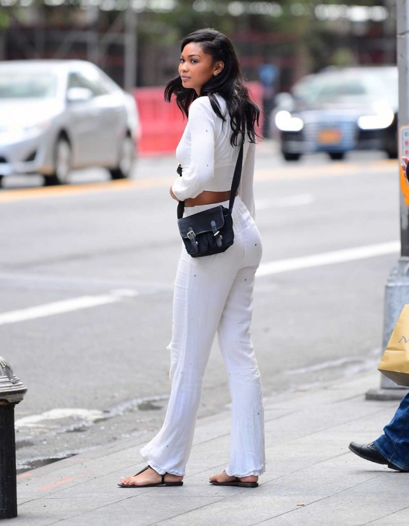 Chanel Iman Was Seen Out in NYC-4
