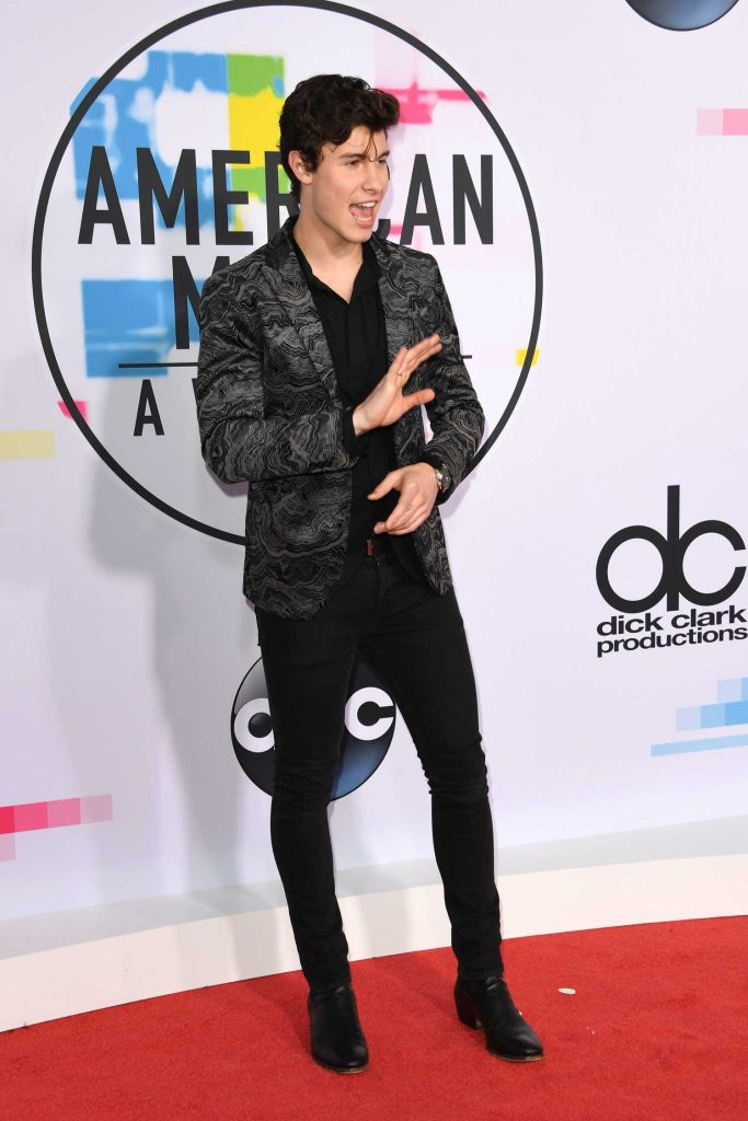 Shawn Mendes at 2017 American Music Awards at the Microsoft Theater in Los Angeles-2
