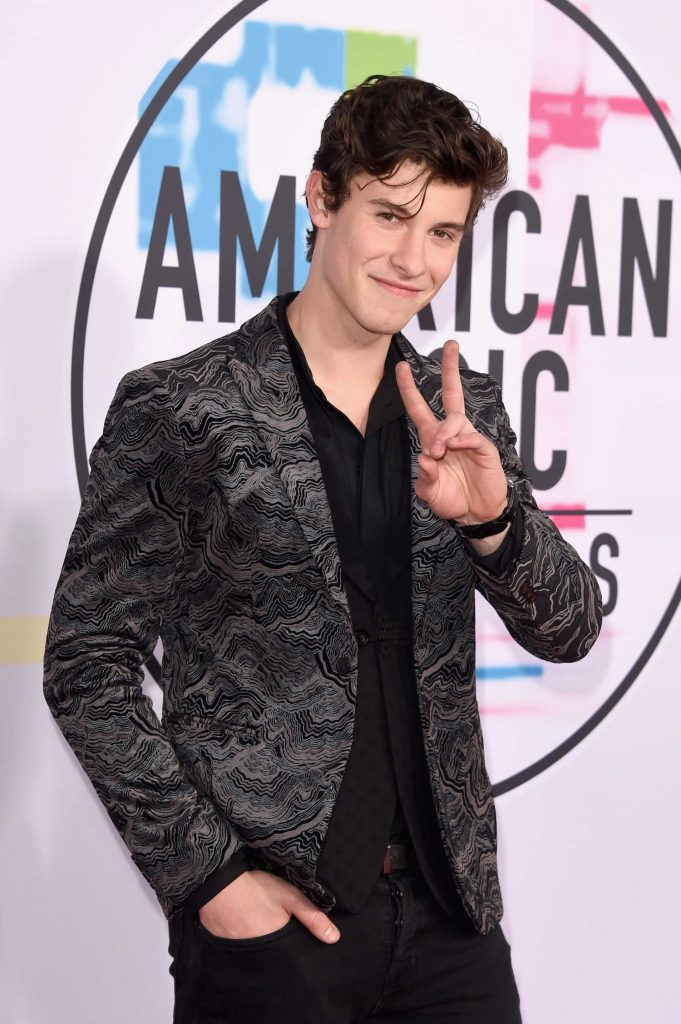 Shawn Mendes at 2017 American Music Awards at the Microsoft Theater in Los Angeles-3
