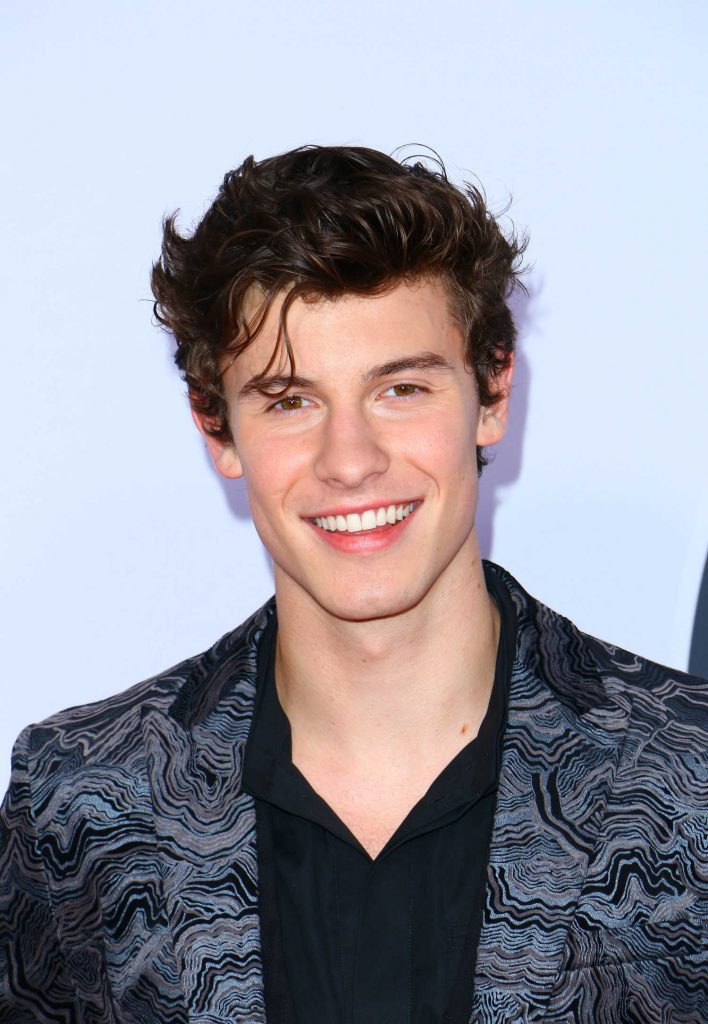 Shawn Mendes at 2017 American Music Awards at the Microsoft Theater in Los Angeles-4