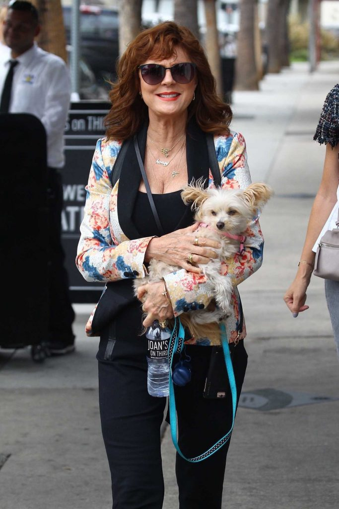 Susan Sarandon Was Seen Out in Studio City-3