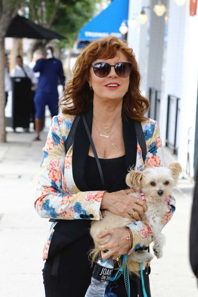 Susan Sarandon Was Seen Out in Studio City-4