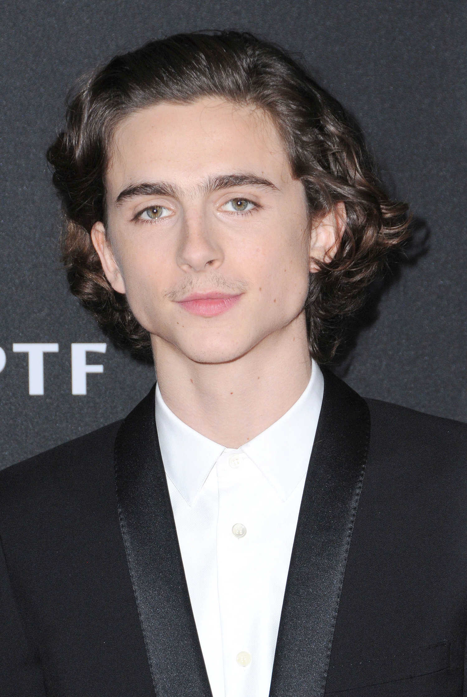 Timothee Chalamet at the 21st Annual Hollywood Film Awards ... Alessandra Ambrosio Photos