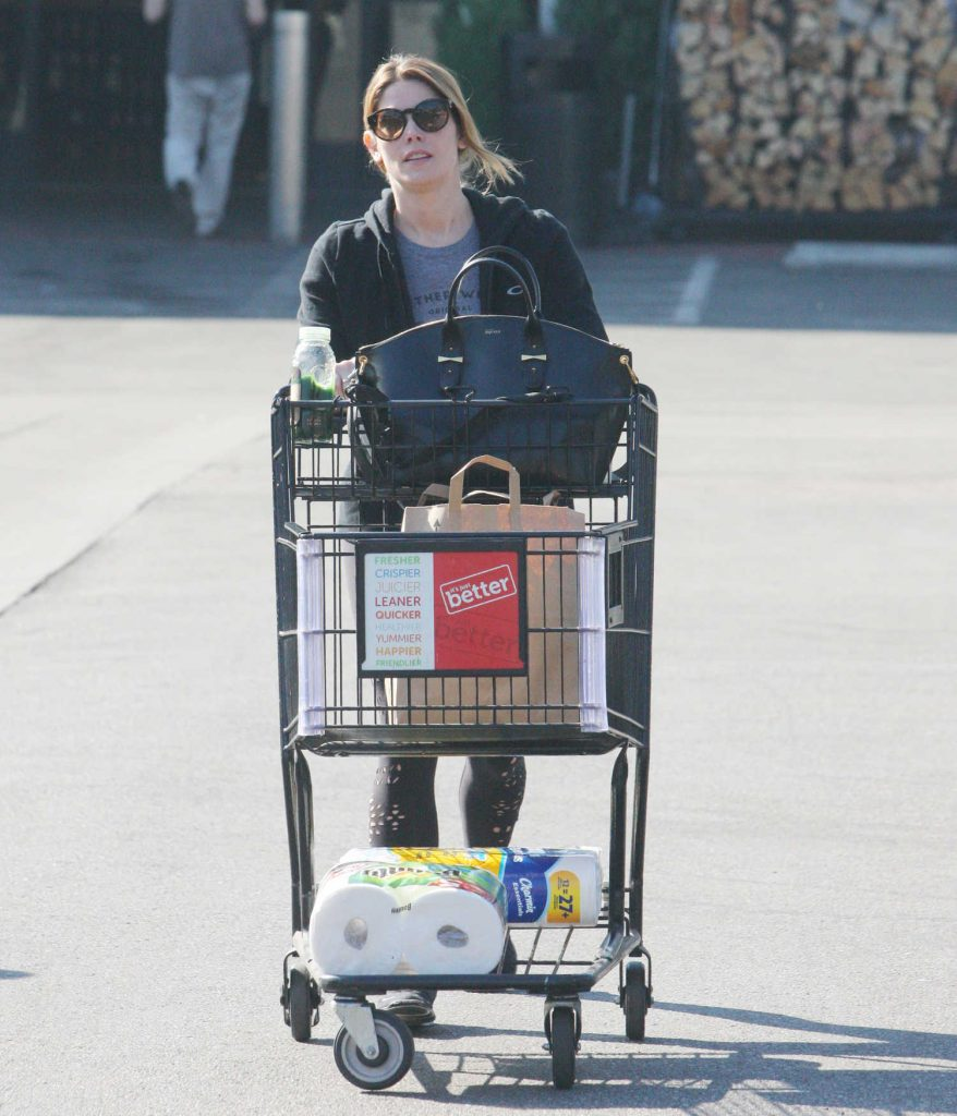 Ashley Greene Goes Shopping for Some Grocery in Beverly Hills-3