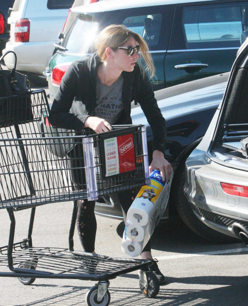 Ashley Greene Goes Shopping for Some Grocery in Beverly Hills-5