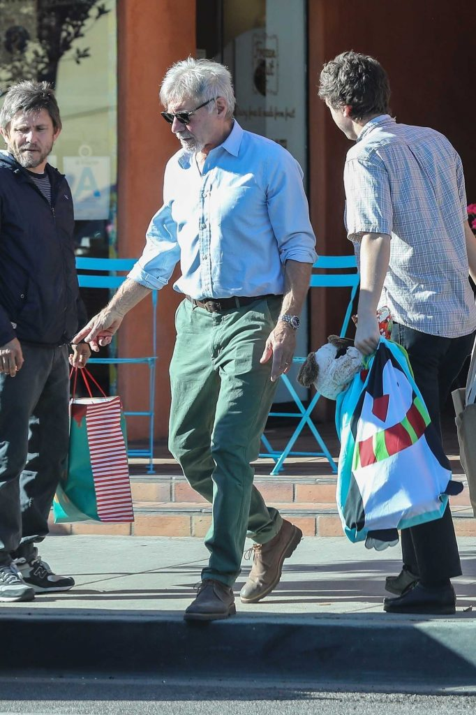 Harrison Ford Has an Impromptu Picnic Out of the Trunk of His Tesla in Santa Monica-1
