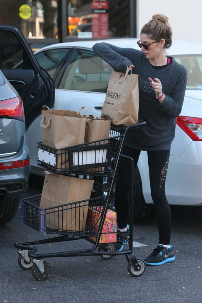 Ashley Greene Out for Grocery Shopping in West Hollywood-4