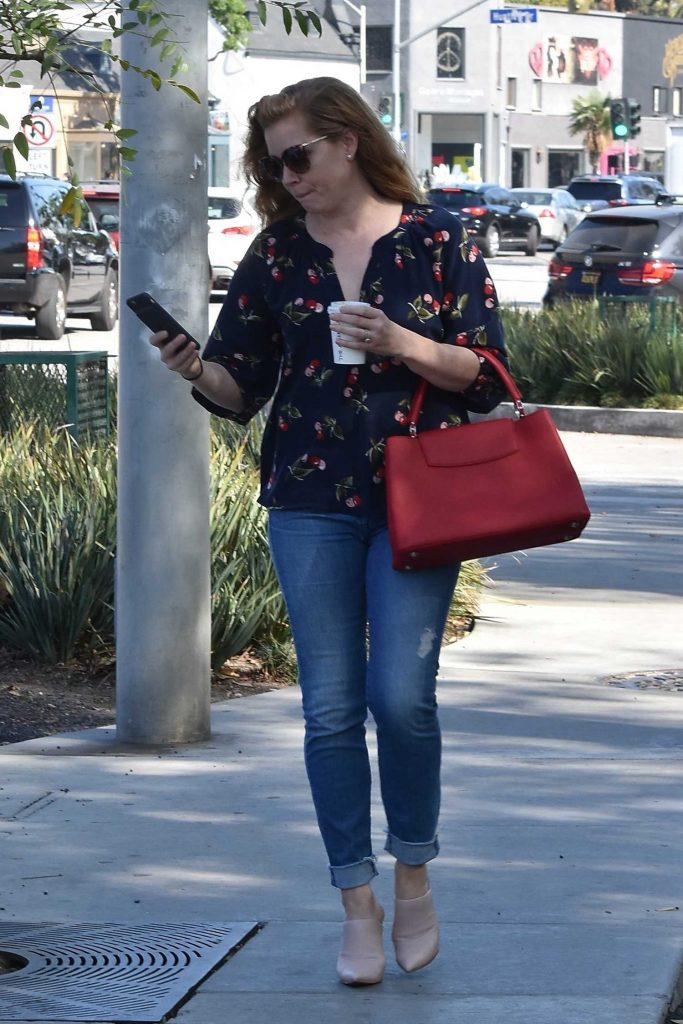 Amy Adams Was Spotted Out in West Hollywood-1