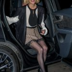 Anne Heche Arrives at the Medienboard Party at the Ritz Carlton Hotel in Berlin