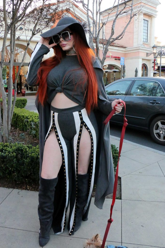 Phoebe Price Walks Her Dog in Calabasas-4
