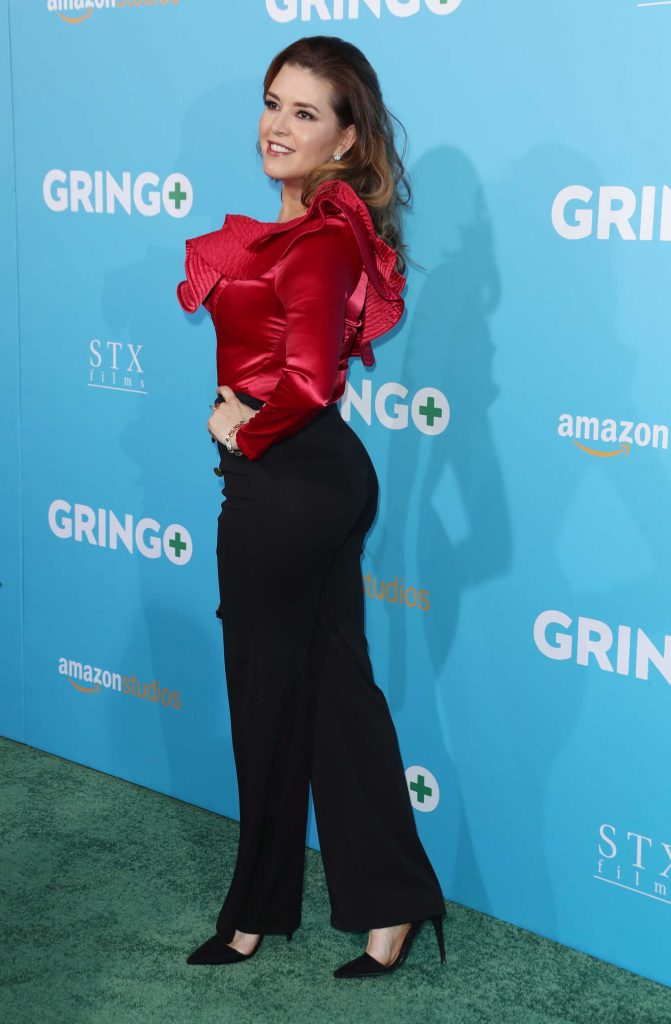 Alicia Machado at Gringo Premiere in Los Angeles-4