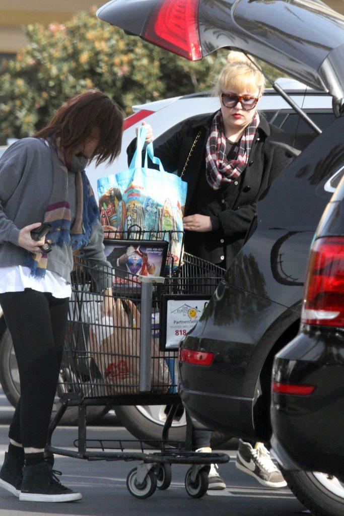 Amanda Bynes Goes Shopping in Santa Monica-4