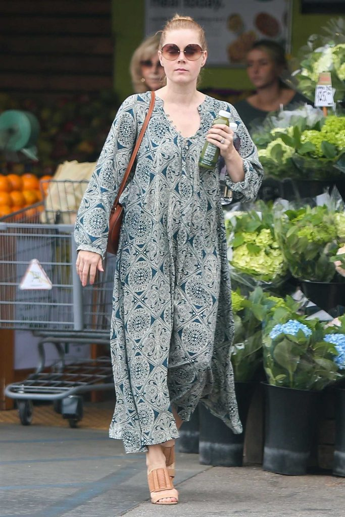 Amy Adams Stepped Out in Los Angeles-1