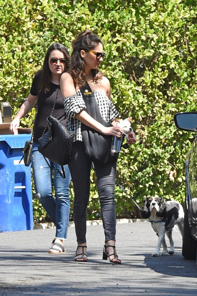 Olivia Munn Carrying Her Dog in Los Angeles-1