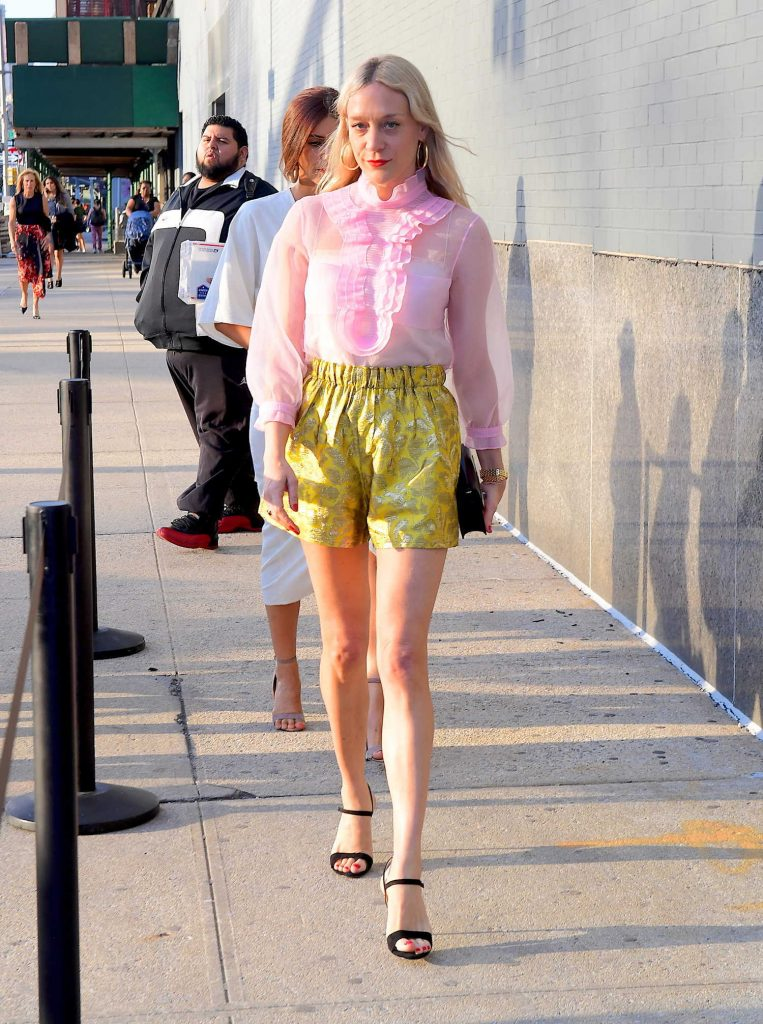 Chloe Sevigny Attends Planned Parenthood Benefit in NYC-2
