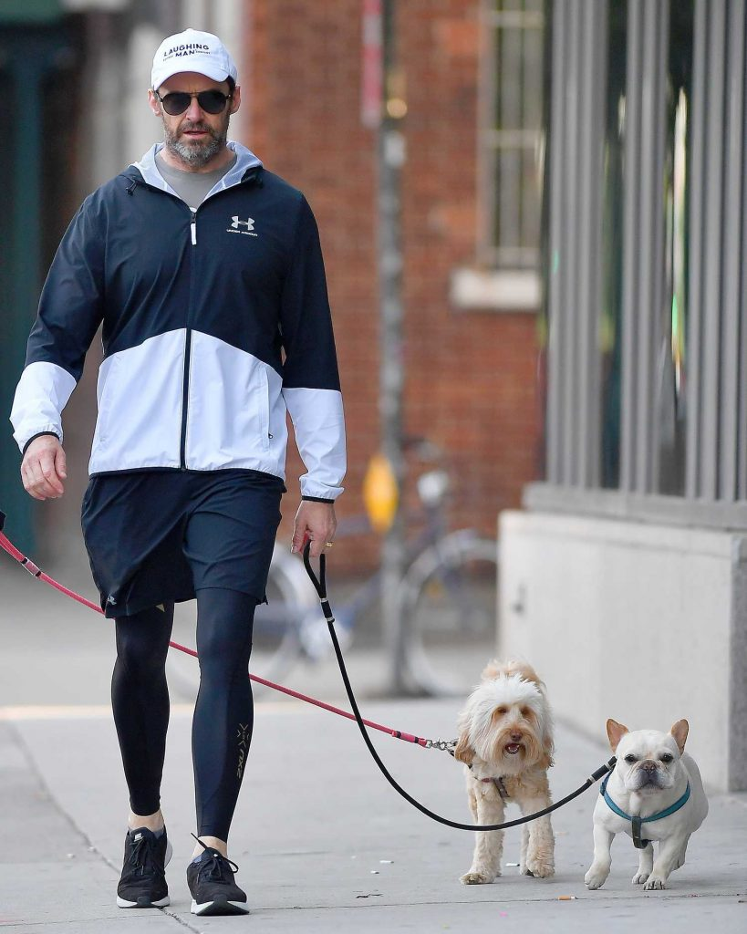 Hugh Jackman Walks His Dogs Out in New York City-1