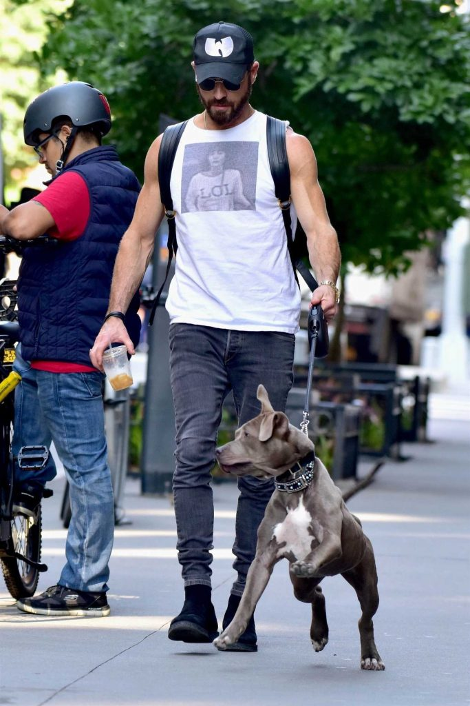 Justin Theroux Walks His Dog Out in New York-2