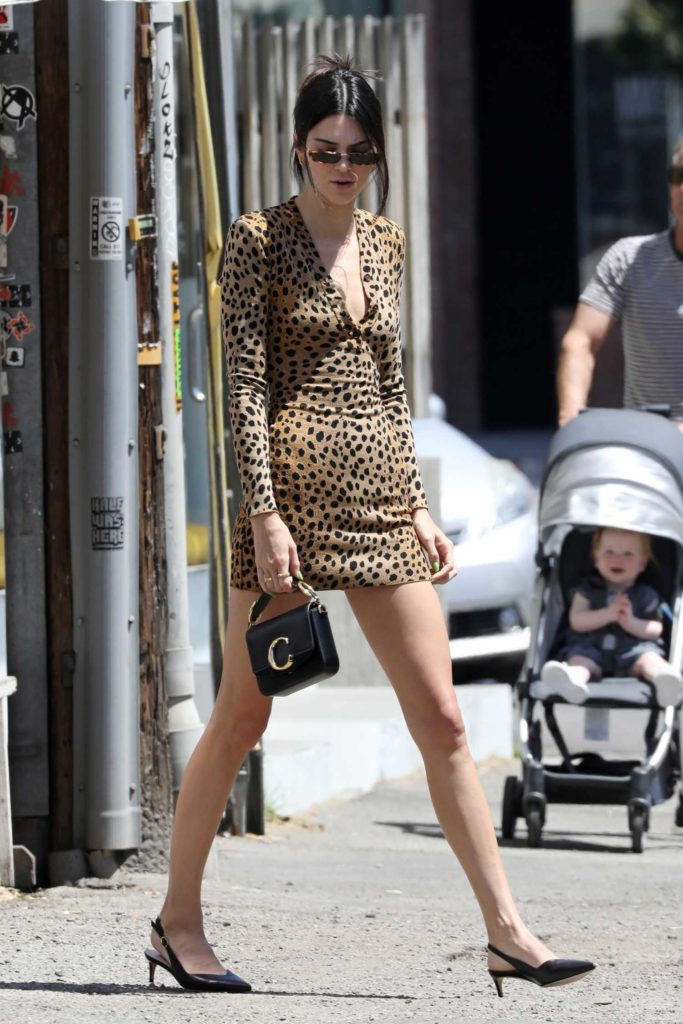 Kendall Jenner in a Leopard Print Dress