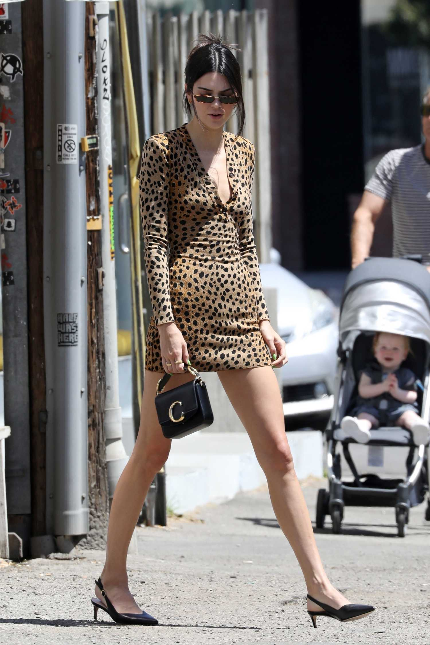 Kendall Jenner In A Leopard Print Dress Was Seen Out In