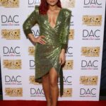 Sharna Burgess Attends Industry Dance Awards and Cancer Benefit Show in Los Angeles