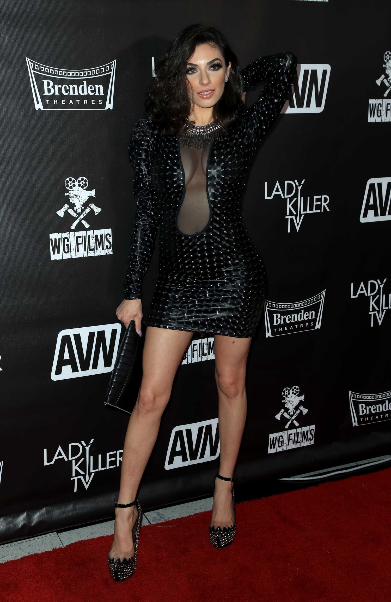 Darcie Dolce Attends the Lady Killer TV Premiere at