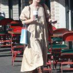 Rachel Bilson in a Beige Dress Was Seen Out in Los Feliz