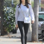 Nina Dobrev in Gray Long Sleeves T-Shirt Was Seen Out in West Hollywood