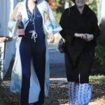 Amy Adams in a Black Coat Was Seen Out in LA