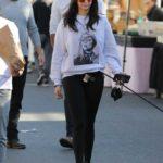 Nina Dobrev in a Gray Sweatshirt Walks Her Dog in West Hollywood