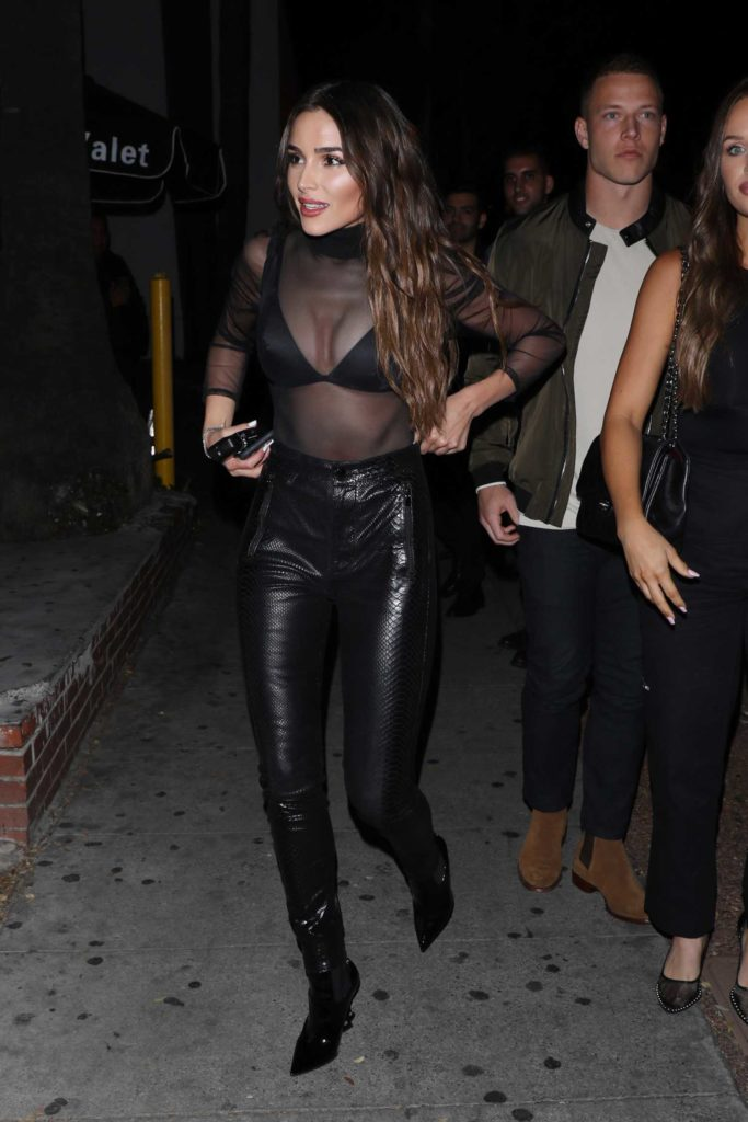 Olivia Culpo in a Black See-Through Blouse