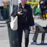 Brie Larson in a Purple Face Mask Stops by a Farmer's Market in Malibu