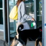 Emily Ratajkowski in a Face Mask Arrives with Her Dog at JFK Airport in New York