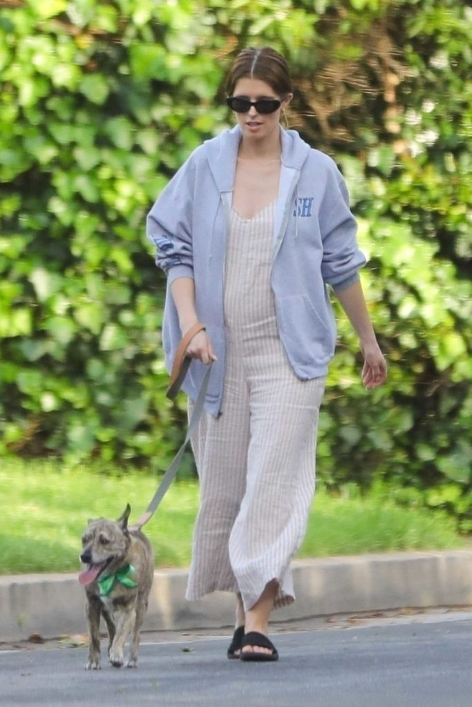Katherine Schwarzenegger Walks Her Dog Out with Her Mother